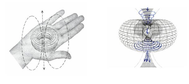 Тороидальная форма